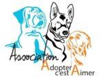 Adopter Cest Aimer
