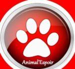 Animal Espoir 39