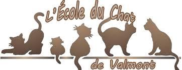 Ecole du chat de avesnois