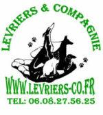 Levriers et Compagnie