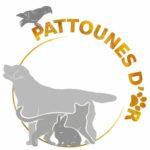 Pattounes dOr
