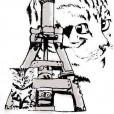 Les Chats du Pilon