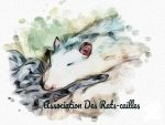 Association des Rats-Cailles